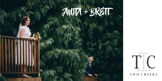 anita_brett